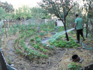 permacultura en prado negro