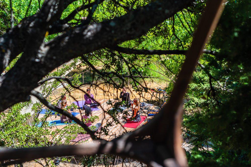 yoga, danza y meditacion en la naturaleza