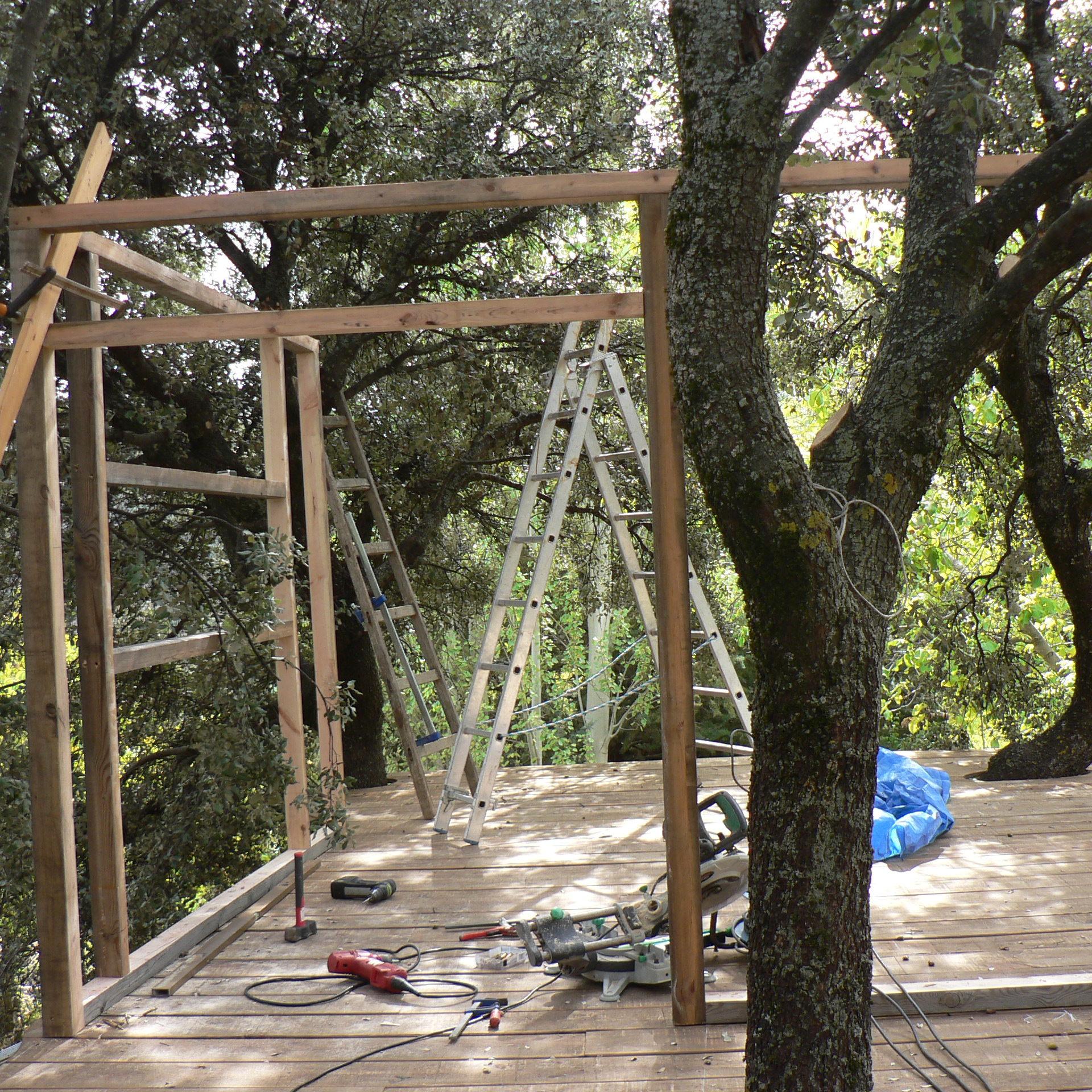 Plataforma y estructura de casa en los árboles en Prado Negro
