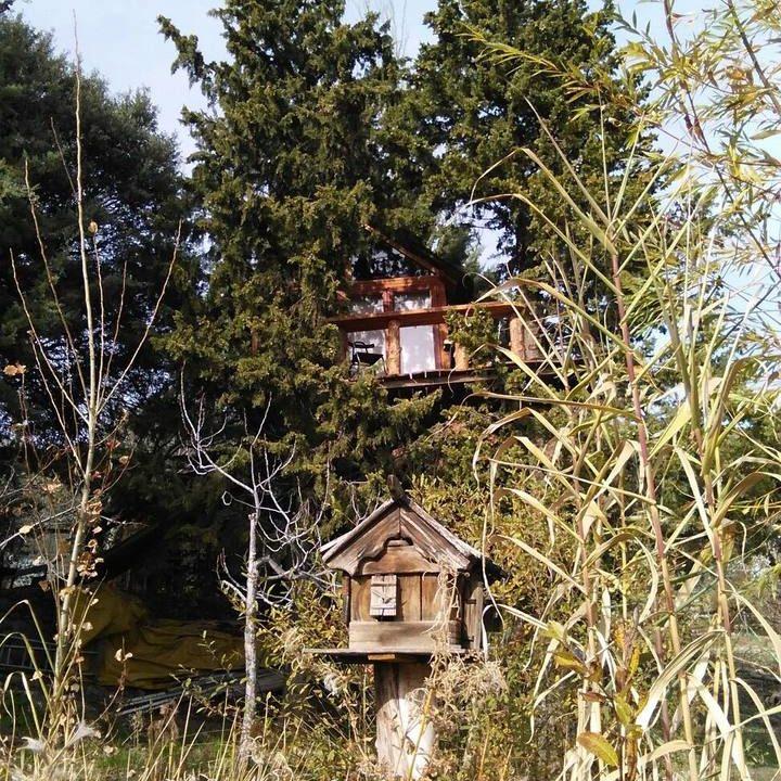 cabaña corcho entre arboles en Prado Negro