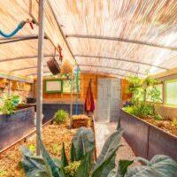 Permacultura en invernadero