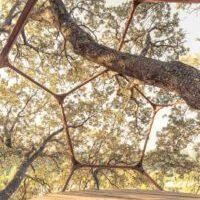 bioconstruccion domo en árbol con Frederic Sardá