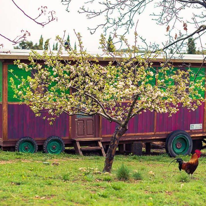 bioconstruccion de caravana en Prado Negro con Sylvain Herbrecht