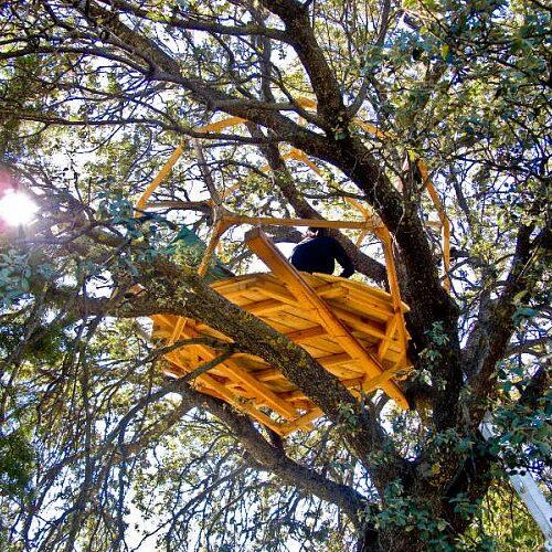 Domo reciclado en arbol en Prado Negro