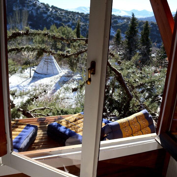 ventana cabaña arbol nido